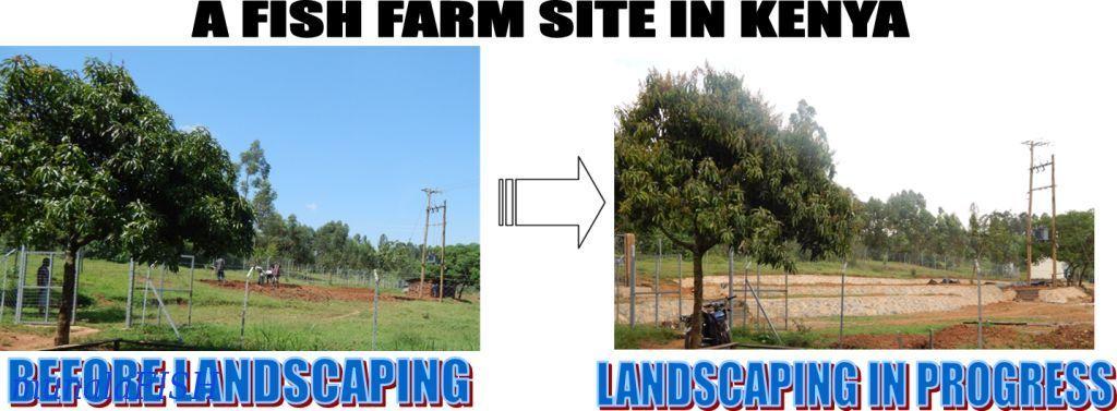 Landscaping Kenya